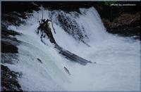 「さくらの滝」清里町 - 北海道photo一撮り旅