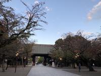 靖国神社✿桜の観光名所 - ピタットハウス方南町店 City Area株式会社BLOG