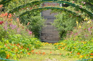 花の庭が花盛りです!! - モネの庭だより
