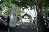 6月の花手水札幌諏訪神社 - 夢風 御朱印日記
