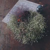 紫スモークツリーのリース2種。 - 古道具ときどき猫。