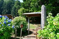 ◆ 「伊豆高原花しょうぶ園」に行った日(2021年6月) - 空とグルメと温泉と