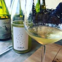 「ワイン版売付きオンラインワイナリー訪問」を開催します! - 幸せなシチリアの食卓、時々にゃんこ