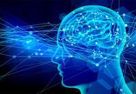 脳の情報処理時間を知ると「できる」が増える。 - English study changes your life.