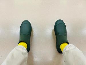梅雨入りしましたので、長靴🥾を購入した☔️ - 総領の甚六【春風亭柳朝No.6のオフィシャルブログ】