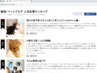 エキサイトブログ人気記事ランキング1位2位猫 しぇる編。 - ゆきねこ猫家族