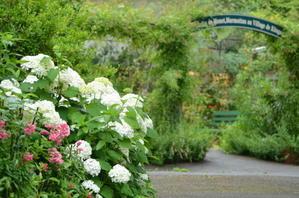【第3日曜日ーモネの庭の押し花教室】のお休みのお知らせ - モネの庭だより