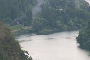 緑の阿賀野川と夏煙 - 2021年初夏・磐越西線 - - ねこの撮った汽車