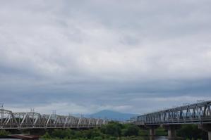 桂川光景202106 -