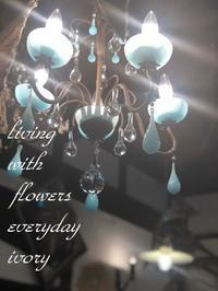 STARTです〜♬ -  Flower and cafe 花空間 ivory (アイボリー)