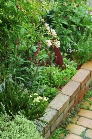 ヒマを弄ぶ・・・(^_^;) - ハイジの玄関先ガーデン エピソード2♪