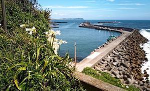 大原漁港と太平洋 - 季節の風
