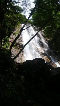 雨後の蒼滝 - 日々の風景