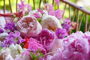 庭のブーケ* (薔薇のころⅦ・5月31日) - FUNKY'S BLUE SKY