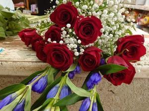 今日のお花 - お花贈りオジサンのブログ・いしべっちのニコニコ日記by石部宅建excite店