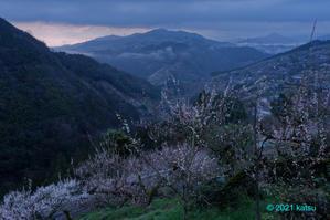霧立つ夜明け - katsuのヘタッピ風景