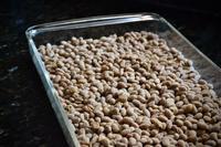 気候危機と納豆作り - たのしい菜食