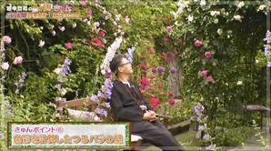 田中哲司の「この庭、きゅんです」は、公式サイトにて無料動画配信中です - 恋子のガーデニング日記
