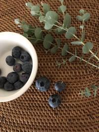 ブルーベリーの収穫 - blancheの日記
