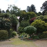 庭の緑 - スペース356