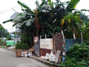 """フィリピンのゴミ事情を解説します!(2021年) - """"ハロハロ de イロイロ""""  フィリピン・イロイロ市のNGO LOOB活動記"""