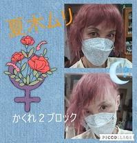 夏木ムリ (7/8) - ニャンコ座リポート  since 2005 April