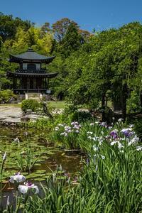 勧修寺 - gathering