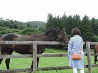 引退馬の牧場 - 今日の鳥さん+α(初心者野鳥写真集)