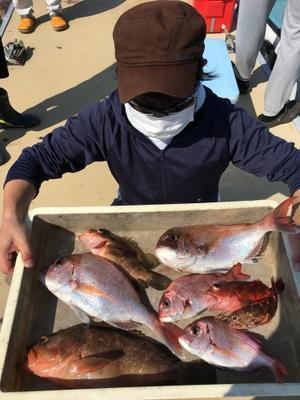 7月11日 鯛ラバ - 船福~瀬戸内の釣り情報
