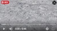Ae どしゃ降りの雨と地面に広がる水の波紋をRainfallとDrizzleで作る - イラスト年賀状
