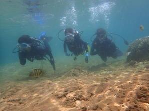 7月13日講習スタート - 沖縄・恩納村のダイビング・青の洞窟体験ダイビング・スノーケルご紹介