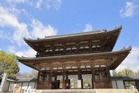 仁和寺の小室桜 - ぴんぼけふぉとぶろぐ2