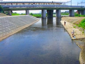 梅雨明けました ガチにオイカワ釣り - 二子玉川 で FF  (Fly Fishing)