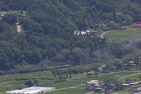 緑濃い季節の黒煙 - 2021年盛夏・上越線 - - ねこの撮った汽車