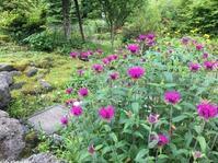十里木高原別荘地@ご近所のお施主様 - 小粋な道草ブログ