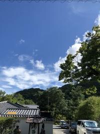 夏の天龍寺のお庭 - g's style day by day ー京都嵐山から、季節を楽しむ日々をお届けしますー