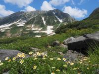 立山三山ぐるりっぽ  2021.7.19~20(月火) - 心のまま、足の向くまま・・・