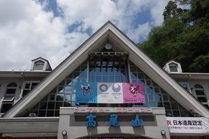 2021.7.16 東京・高尾山 イワタバコ   2021.7.23 (記) - たかがヤマト、されどヤマト