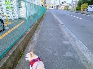 東京オリンピック - トッシーの Blog