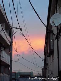 染まる空と華やかな味 - 丁寧な生活をゆっくりと2