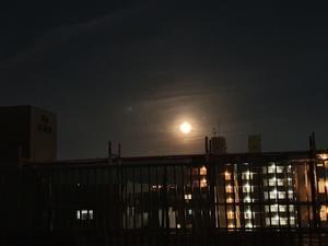 Full Moon - my sweet days