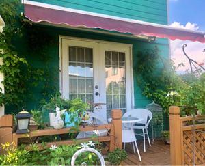 夏も美しい〝ローズローブドール 〟と挿し木で広がるバラの輪? - 薪割りマコのバラの庭