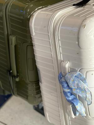 スーツケースふたつ - ミセス サファイア 静けさの中で