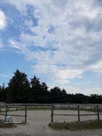 サマータイム - ヨモギ日記