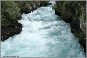 ニュージーランド(2003) 18年前のフカ滝・ワイトモ・ワイナリー - 野鳥の素顔 <野鳥と日々の出来事>