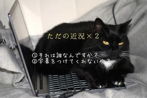 ①贔屓は綺麗②字幕希望 - コードスミレ