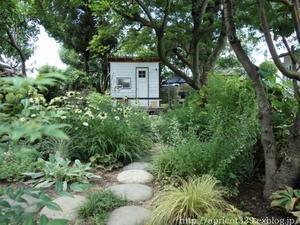 夏の庭しごと 庭に咲いた低木と宿根草の花 - シンプルで心地いい暮らし