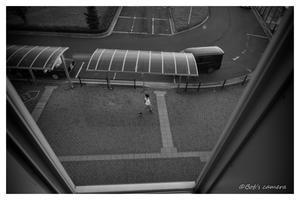 上から覗く - BobのCamera