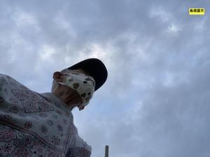 早朝散歩の曇天を仰ぐ&初収穫の熟れたゴーヤ!! - みつい 禮の演歌部屋