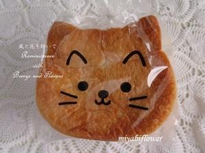 変身するねこパン レタスを食べるうさぎパン と 七月のあれこれ - 風と花を紡いで